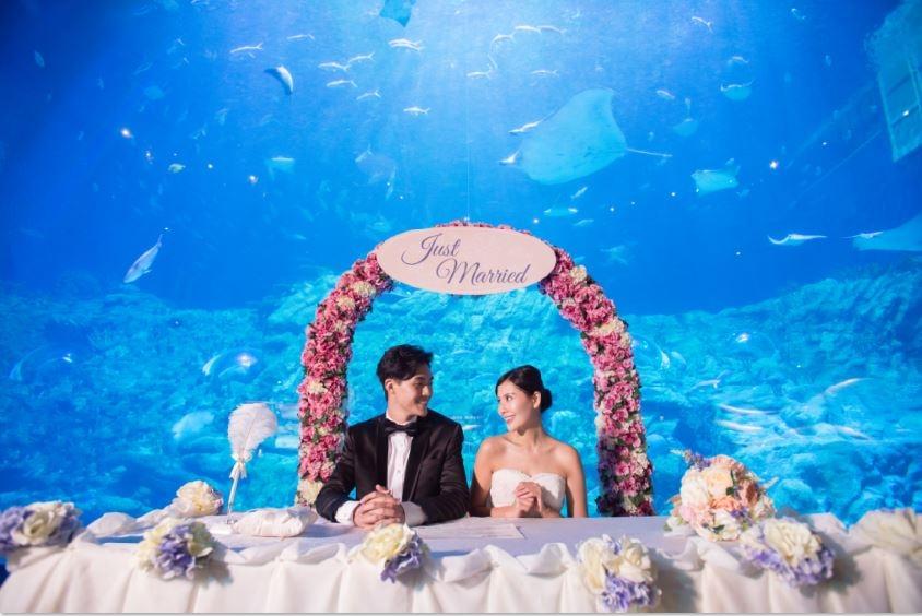 香港海洋公園 Hong Kong Ocean Park-4-婚宴場地