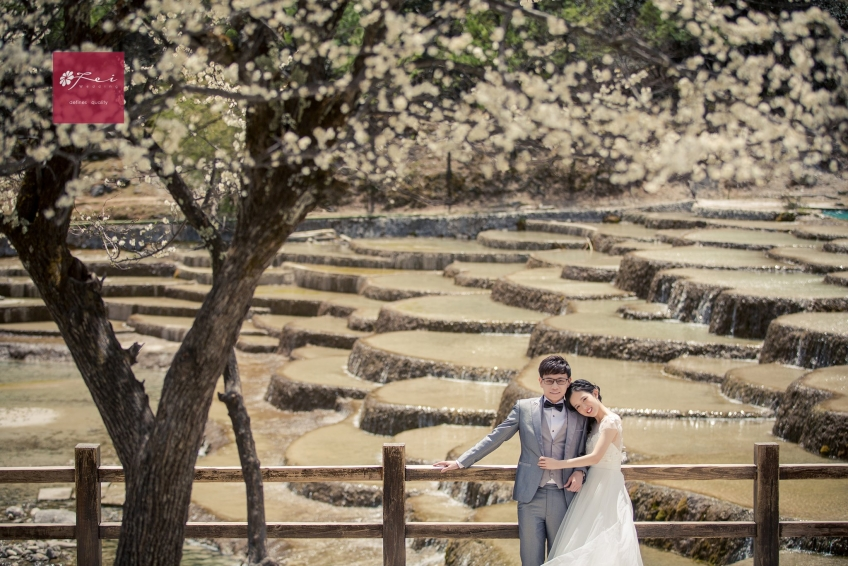 菲.攝影 Fei Wedding Photography-5
