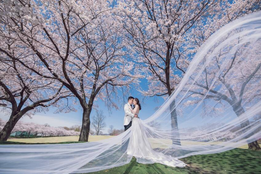 Picasso Wedding Limited-4-婚紗攝影