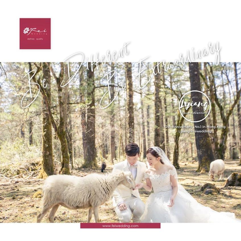 菲.攝影 Fei Wedding Photography-2-婚紗攝影